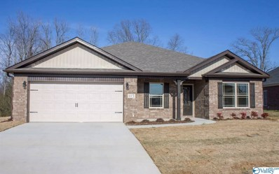 16 Beaver Brook Place, Toney, AL 35773 - MLS#: 1117048