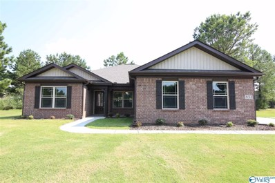 17 Beaver Brook Place, Toney, AL 35773 - MLS#: 1117050