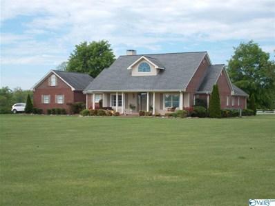 4251 County Road 46, Dawson, AL 35963 - MLS#: 1117190