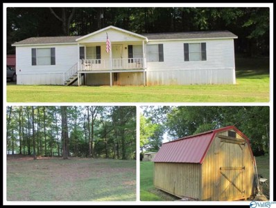 44 Elmer Pierce Road, Guntersville, AL 35976 - #: 1117214