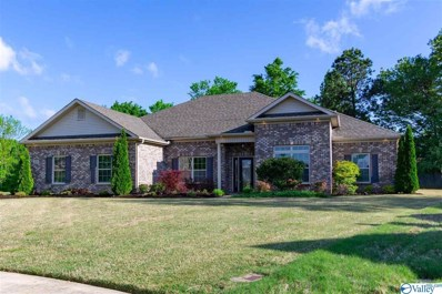 200 Waterbrook Lane, Harvest, AL 35749 - #: 1117445