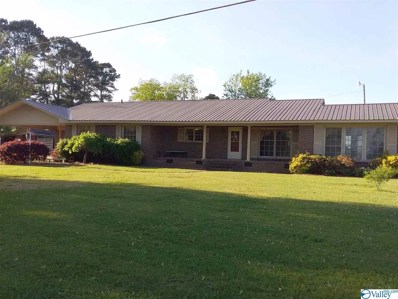 585 Double Bridges Road, Boaz, AL 35957 - #: 1117555