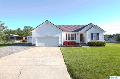 3012 Edmonds Drive, Scottsboro, AL 35769 - #: 1117628