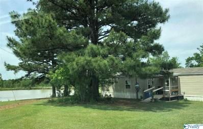 1459 County Road 231, Moulton, AL 35650 - #: 1117649