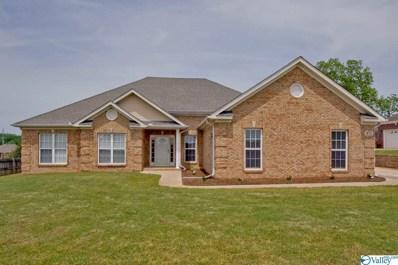 871 Dan Tibbs Road, Huntsville, AL 35806 - #: 1117724
