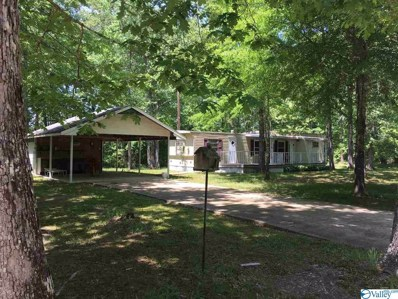 County Road 698, Cedar Bluff, AL 35959 - #: 1117824