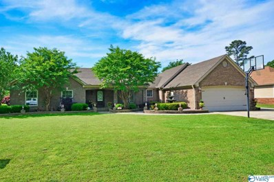 98 Mountain Home Road, Trinity, AL 35673 - #: 1117878