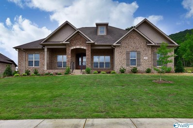 35 Abby Glen Way, Gurley, AL 35748 - #: 1118133