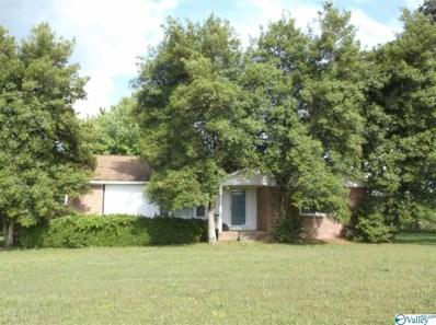 230 Walker Creek Road, Taft, TN 38488 - #: 1118142