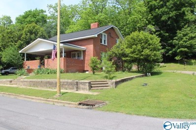 100 Forest Avenue, Fort Payne, AL 35967 - #: 1118188