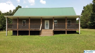 95 County Road 369, Fort Payne, AL 35967 - #: 1118204