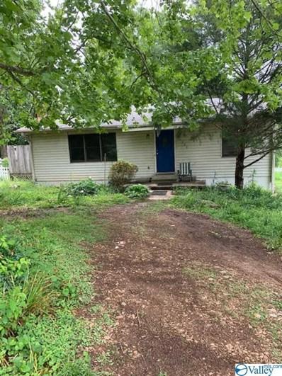 21380 Buck Island Road, Athens, AL 35614 - #: 1118369