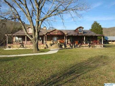 370 County Road 534, Scottsboro, AL 35768 - #: 1118611