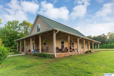 520 Shady Grove Road, Toney, AL 35773 - #: 1118630