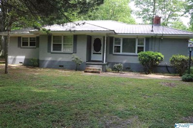 131 Warrenton Road, Guntersville, AL 35976 - #: 1118829