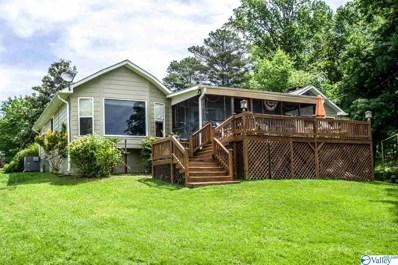 50 County Road 690, Cedar Bluff, AL 35959 - #: 1118832
