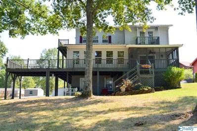 691 County Road 640, Cedar Bluff, AL 35959 - #: 1118904