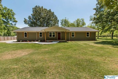22608 Smith Road, Athens, AL 35613 - #: 1119024
