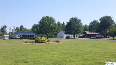 1952 Nixon Chapel Road, Albertville, AL 35950 - #: 1119149