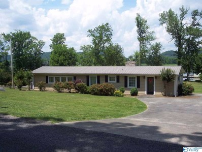 225 County Road 24, Scottsboro, AL 35768 - #: 1119190