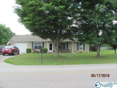 724 Jimmy Fisk Road, Hazel Green, AL 35750 - #: 1119211