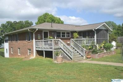 30 County Road 690, Cedar Bluff, AL 35959 - #: 1119329