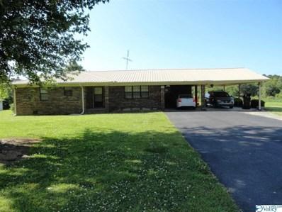 156 County Road 451, Dutton, AL 35744 - #: 1119389