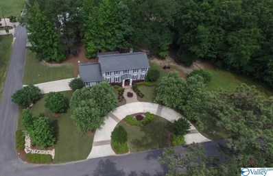 1615 Beech Hollow Road, Southside, AL 35907 - MLS#: 1119477