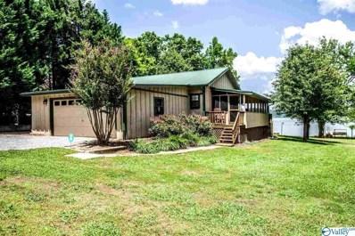 145 County Road 646, Cedar Bluff, AL 35959 - #: 1119527