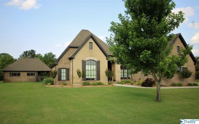 2906 Cedar Creek, Decatur, AL 35603 - #: 1119637