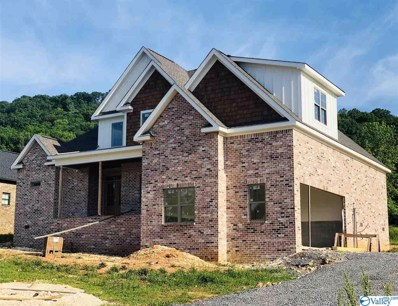 125 Lake Creek Drive, Guntersville, AL 35976 - #: 1119655