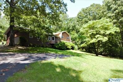 35 Blue Pond Road, Leesburg, AL 35983 - #: 1119793
