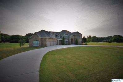 4173 Indian Hills Road, Decatur, AL 35603 - #: 1119912