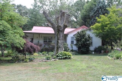1287 Alabama Highway 35, Fort Payne, AL 35967 - #: 1120095