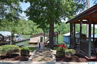 388 Fisher Hollow Road, Guntersville, AL 35976 - #: 1120295