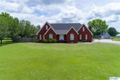 7928 County Road 221, Trinity, AL 35673 - #: 1120695