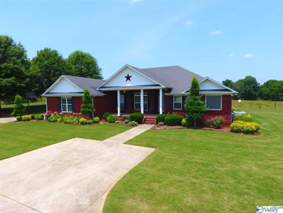 28493 Wooley Springs Road, Athens, AL 35613 - #: 1120704