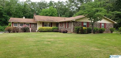 155 County Road 421, Centre, AL 35960 - MLS#: 1120790