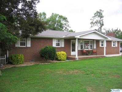 4908 Elizabeth Street, Guntersville, AL 35976 - #: 1120971
