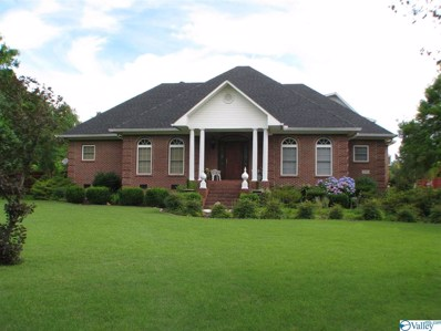 335 Shady Grove Road, Toney, AL 35773 - #: 1121007