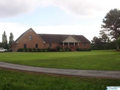 119 Duck Spring Road, Toney, AL 35773 - #: 1121626