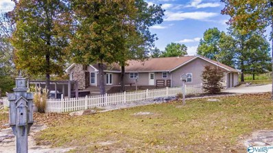9890 County Road 103, Mentone, AL 35984 - #: 1122165