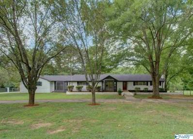 356 Williams And Broad Drive, Brownsboro, AL 35741 - #: 1122308