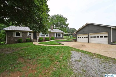 12421 Grigsby Ferry Road, Elkmont, AL 35620 - #: 1122319