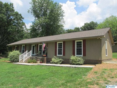 2844 County Road 121, Fort Payne, AL 35968 - #: 1122434