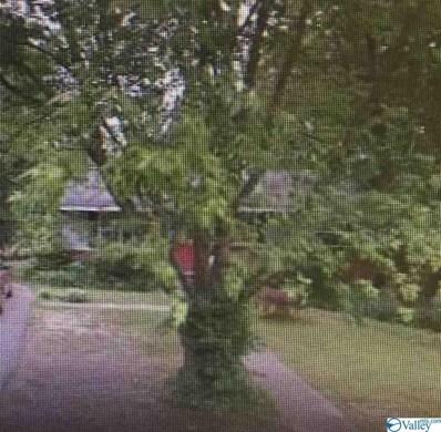 206 Bolvin Circle, Albertville, AL 35950 - #: 1122596