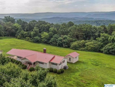 775 Mountain View Drive, Fort Payne, AL 35968 - #: 1122615