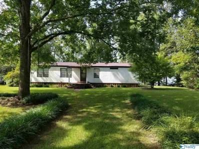 905 County Road 611, Centre, AL 35960 - #: 1122699