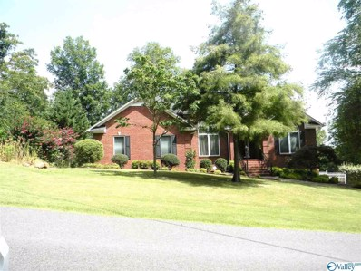 5368 Mountain Top Drive, Southside, AL 35907 - MLS#: 1123031