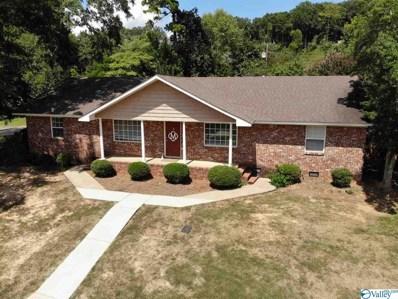3500 Colonial Drive, Guntersville, AL 35976 - #: 1123271